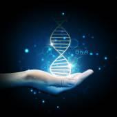 Šroubovice DNA na skladě