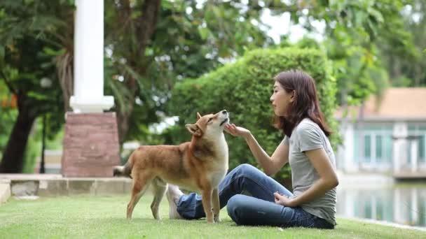 Mladá ženská a psí letní koncepce. Ta holka si hraje se psem Shiba Inu na dvorku. Asijské ženy jsou výuka a školení psů pozdravit potřesením rukou.