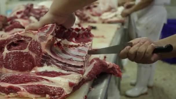 Pitva hovězího nebo vepřového. Řezníci Házejí kostmi v potravinářském průmyslu. Řezník krájí jatečně upravené tělo při výrobě masa.