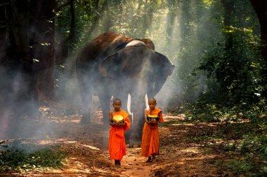 Keşişler ve keşişler ormanda, arkalarında filler olan köyler arasında yürüyüş halindeler. Surin, Tayland