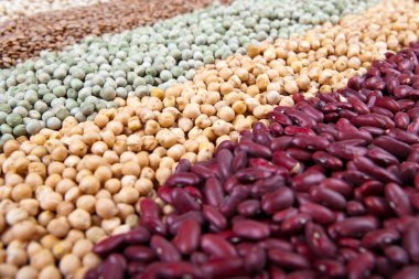 Colorful legume mix, with beans, lentils and peas