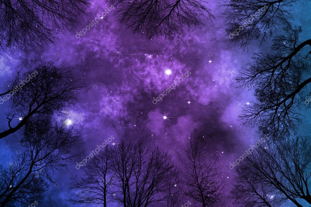 low angle view of bright colorful nebula on starry night sky, view trough trees