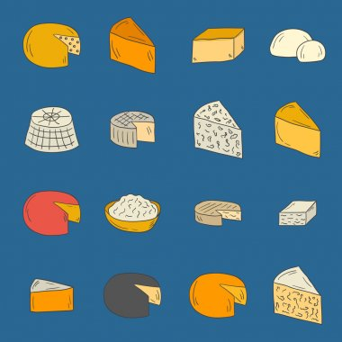 Vector hand drawn cheese types