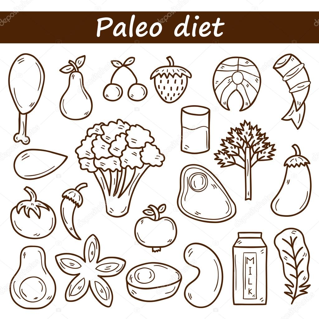 set of objects in hand drawn outline style on paleo diet theme meat fish fruits vegetables spices nuts healthy food concept for your design vector