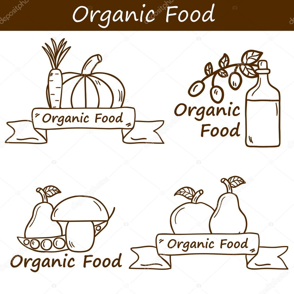 Vector organic food concept