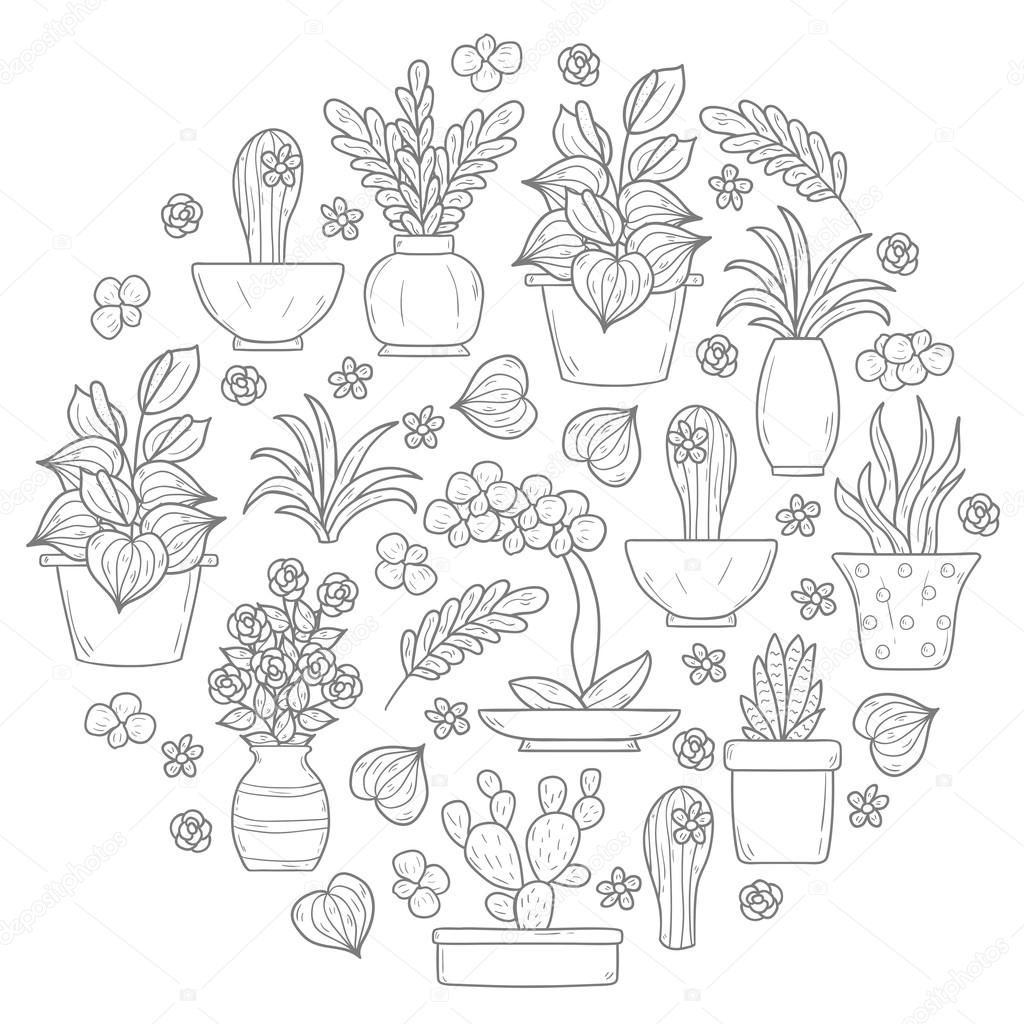 Round houseplant background