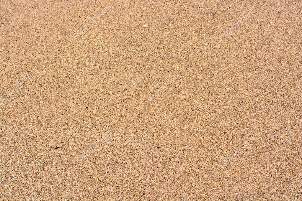 wet beach sand