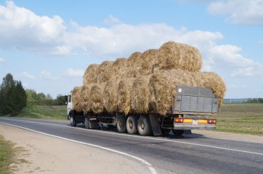 Heavy vehicles carrying large bales of hay round shape