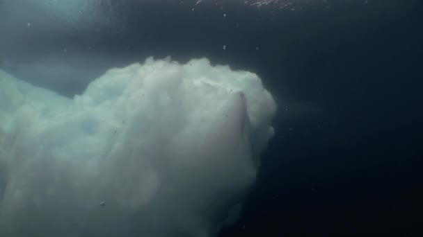 Unique Filming Shooting of iceberg under water.