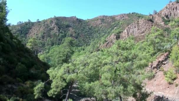 Türkiye 'de kayalık dağlar ve yeşil ağaçlar açık mavi gökyüzüne karşı.
