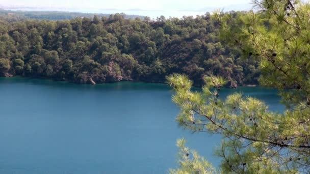 Türkiye 'de deniz manzarasının arka planında, kıyı dağında güneş ışınlarındaki yeşil ağaçlar.