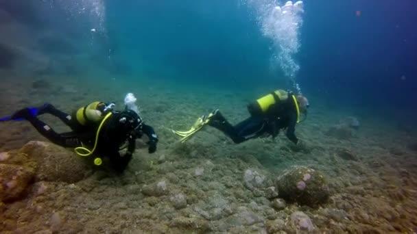 Group of divers underwater on bottom of volcanic origin in Atlantic ocean.