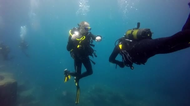 Group of divers underwater on decompression in Atlantic ocean.