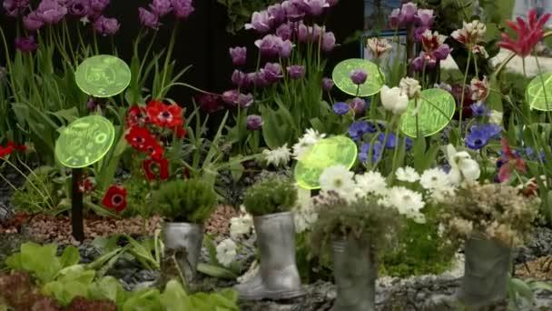 Blumen auf Frühlingsfest der Blumen, Landschaftsgestaltung, Lebensmittel RHS Malvern Hills.