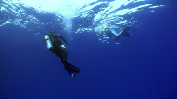 Mladá žena mořská panna pózuje pro kameraman pod vodou v moři.