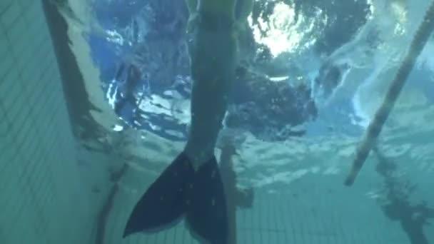 Mořská panna dívka podvodní model v bazénu.