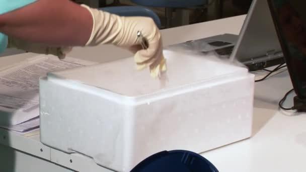 Termékenységi orvos-val Mikroszkóp, fecskendő és petri-csészébe megtermékenyítés, a tojás és a kutatás a reprodukciós klinikák