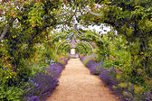 Photo Colourful English summer flower garden with a path under archway