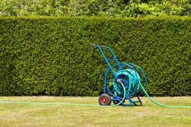 Blue heavy duty garden hose reel, trolley for garden watering on dried out lawn that suffered from drought