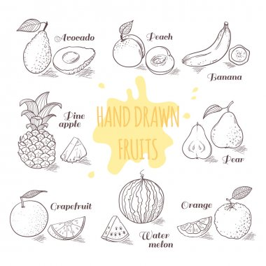 Set of hand drawn outline fruits with slice. Doodle illustration