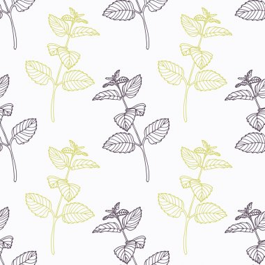Hand drawn melissa branch stylized black and green seamless pattern