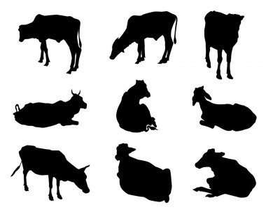 Cows Silhouette Set-Vector