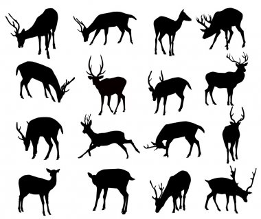 Deer Silhouette Set-Vector