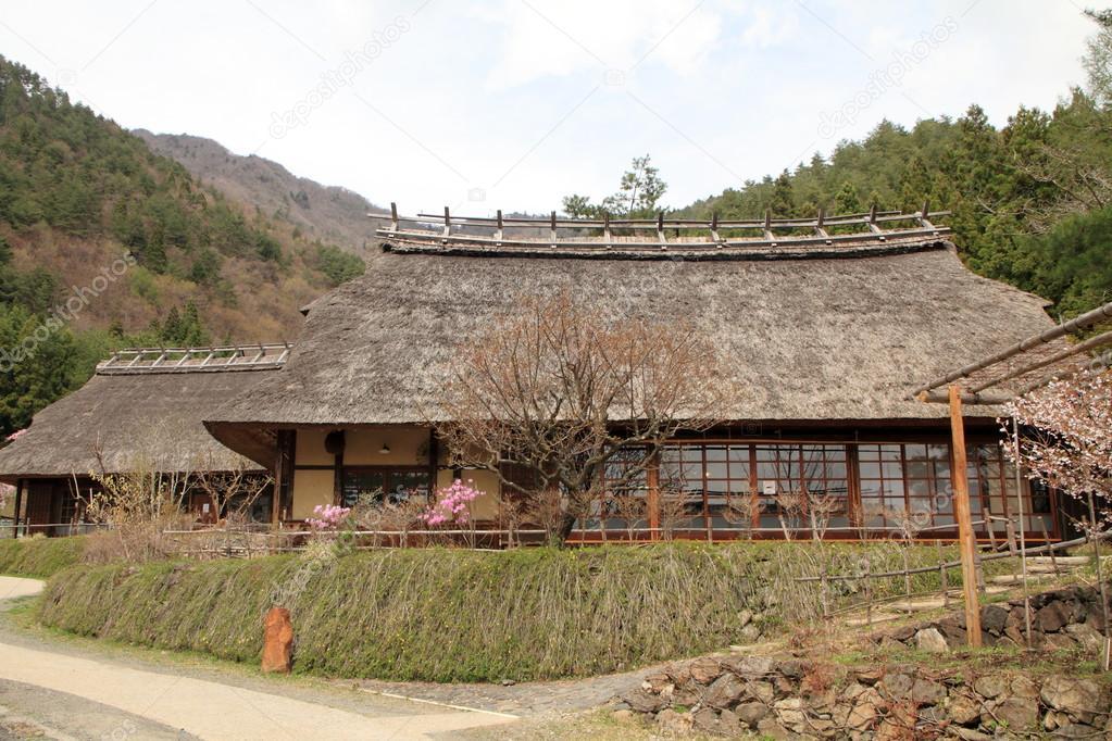 일본의 초가 지붕 하우스와 사이코 야마나시 일본에서 벚꽃 스톡 사진 169 Ziggy Mars