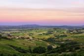 Fotografia Dopo i tramonti, vigneti di Beaujolais, Francia