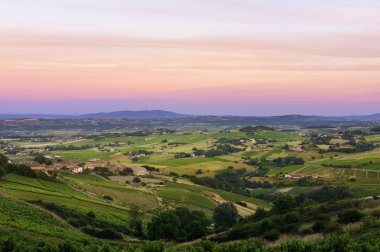 After the sunset, vineyards of Beaujolais, France