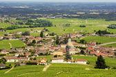 Fotografia Vista del villaggio di Fleurie e vigneti, Beaujolais, Francia