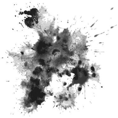 Vector blots