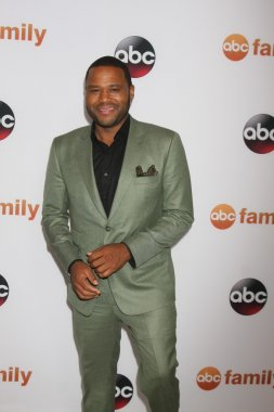 Anthony Anderson at the ABC