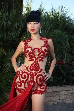 Bai Ling Models her See-Thru Red Dress