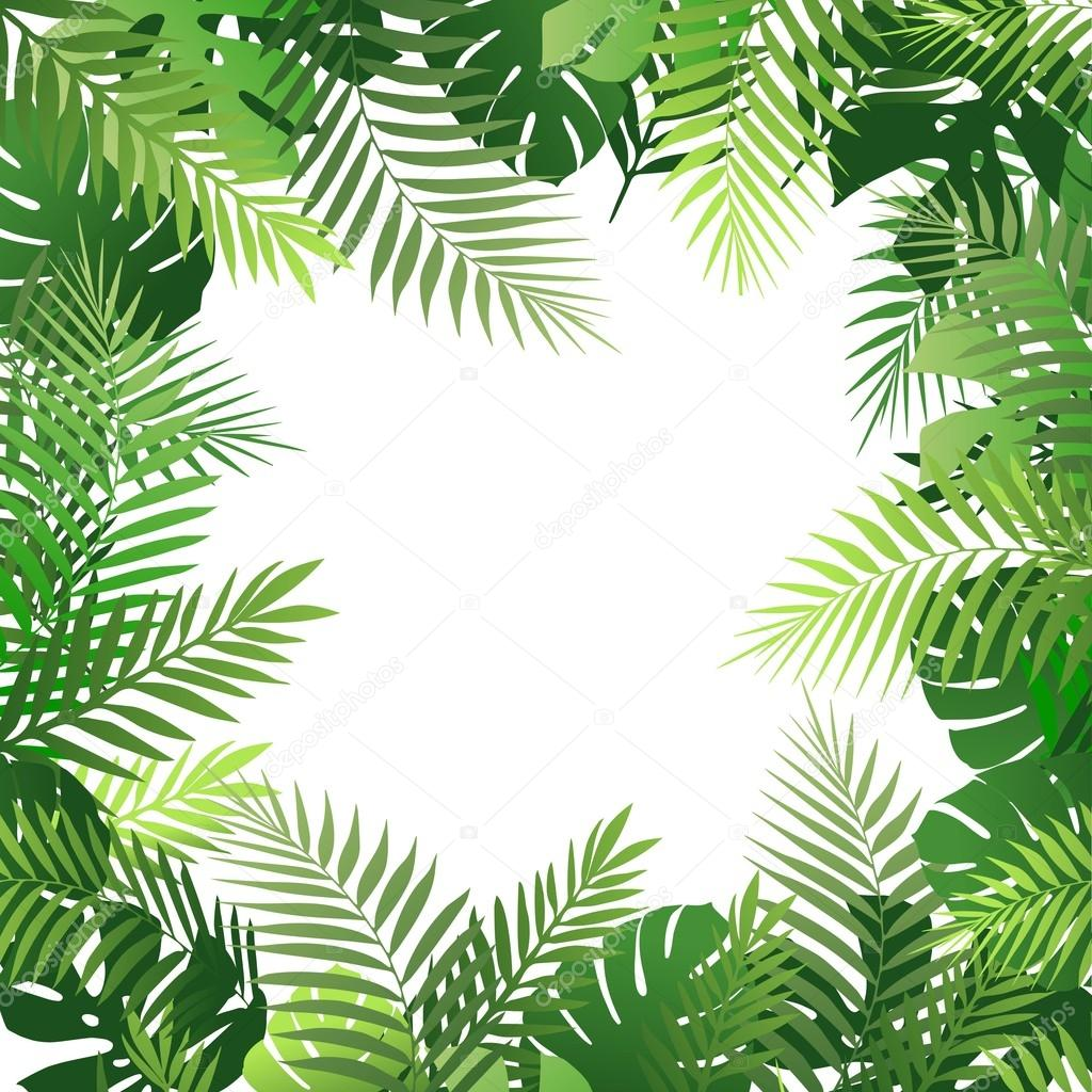 fondo tropical de verano con palmeras hojas vector de Palm Tree Leave Art Palm Tree Leave Art