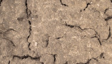 Surface of a grungy dry cracking earth for textural background.