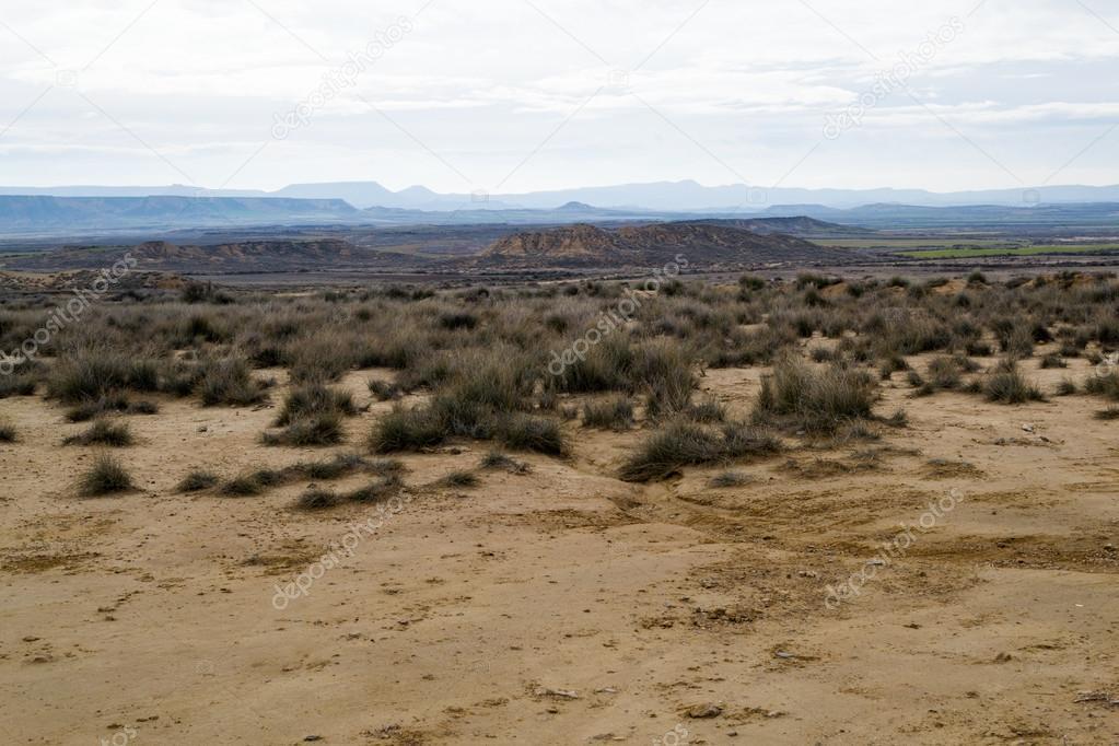 Bardenas semi-desert
