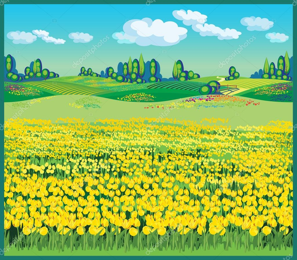 beautiful country landscape with tulips