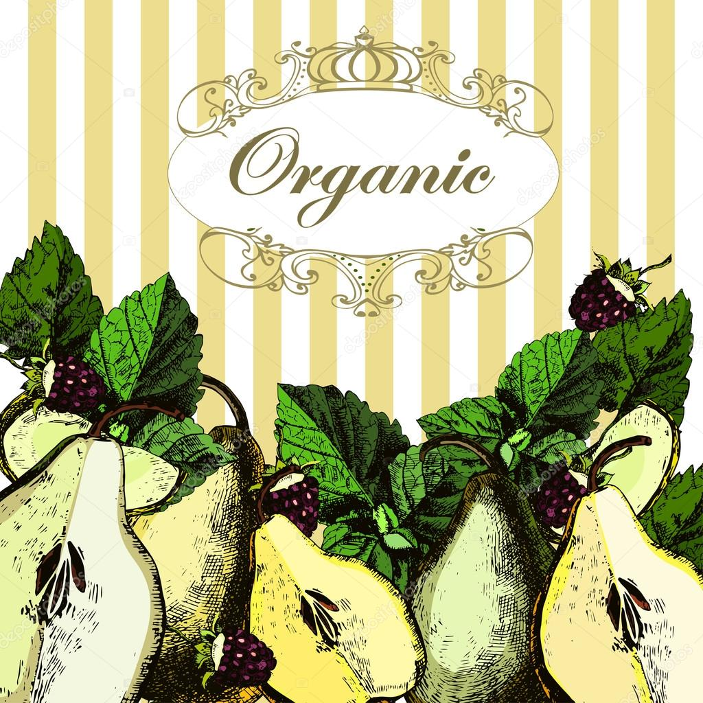 Beautiful illustrations with organic pears.