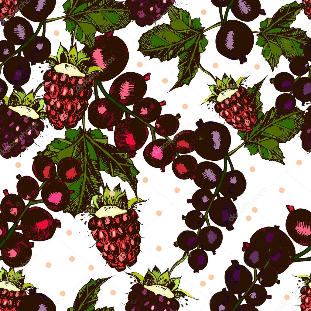 beautiful pattern with berries, blackberries, raspberries, currants on a white background