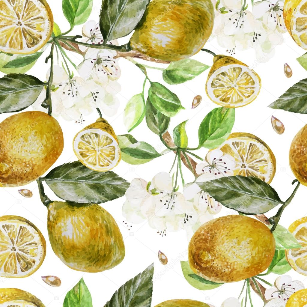Beautiful watercolor pattern with flowers and citrus on a white background