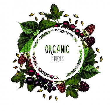 Label organic berryes on a white background.