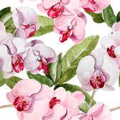 Fényképek Orchidea virág mintával