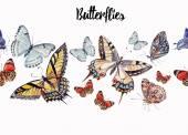 Photo watercolor beautiful butterflies