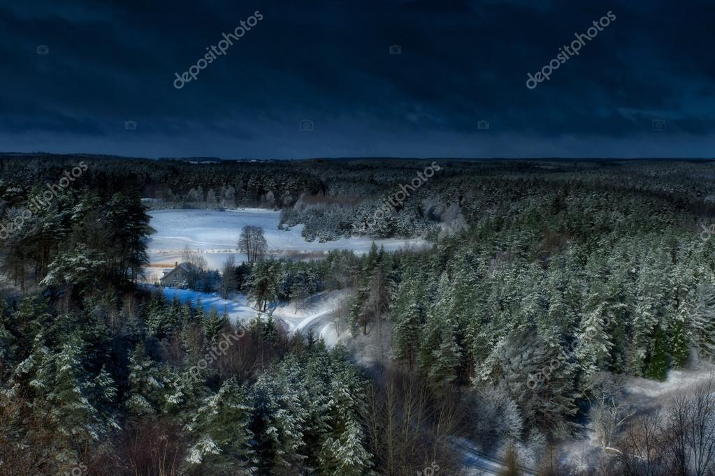 dark winter forest stock photo ysuel 66665231