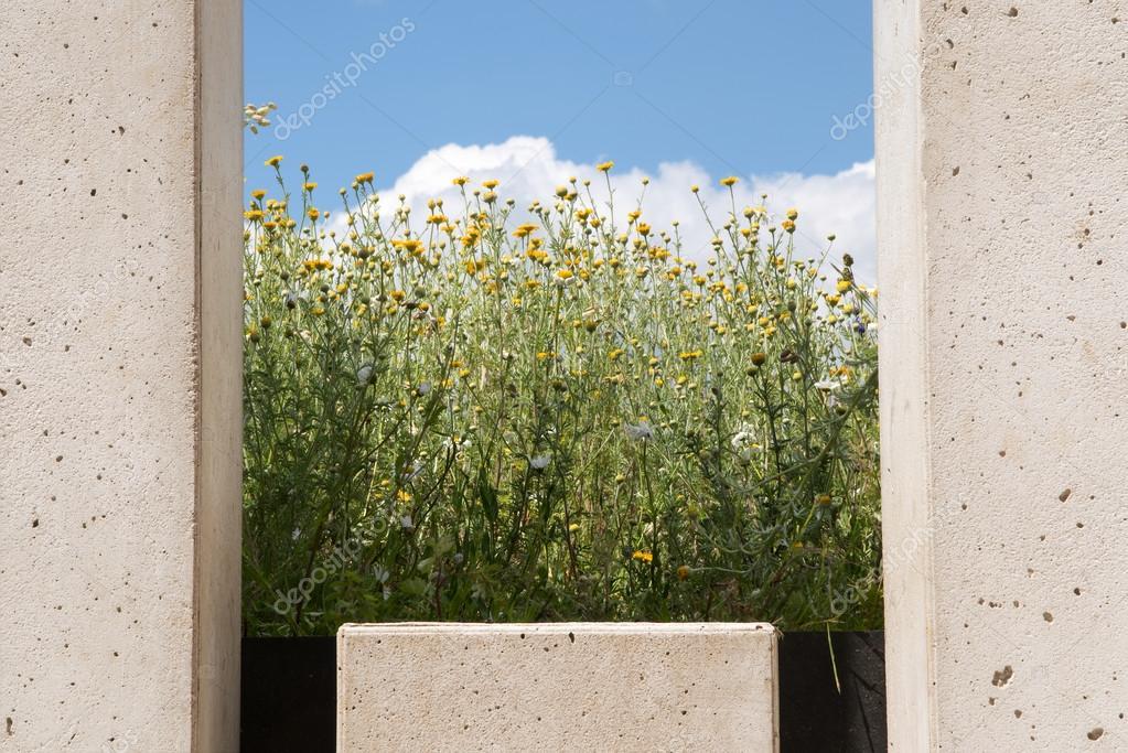 Moderne Gartengestaltung Wand Von Betonsteinen Mit Einem