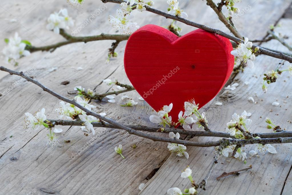 red heart  with flower branch,  love symbol for valentine's day