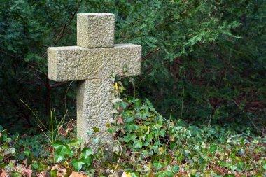 grave stone cross in evergreen plants
