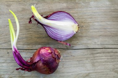sprouting red onions whole and half on rustic wood
