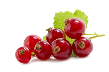 red currants with a green leaf isolatet on white